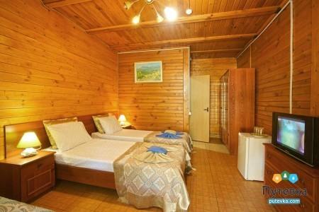 Стандарт 3-местный 1-комнатный с двориком патио, фото 2