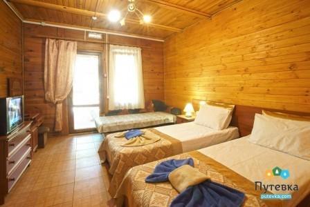 Стандарт 3-местный 1-комнатный с двориком патио, фото 1
