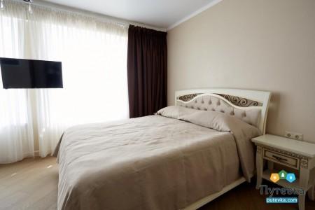 Люкс 2-местный 2-комнатный VIP , фото 1