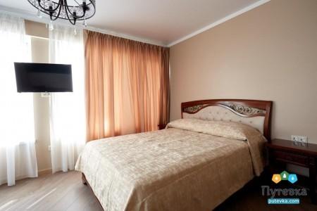 Люкс 2-местный 2-комнатный VIP , фото 3